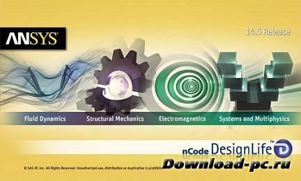 ANSYS 14.5 nCode DesignLife (x86/x64)